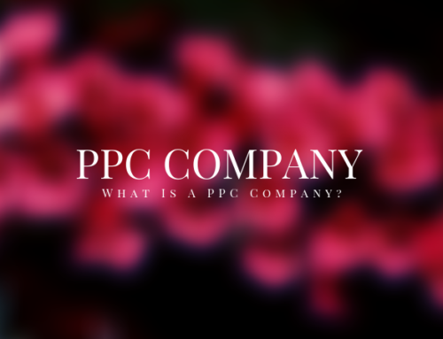 What Is A PPC Company?